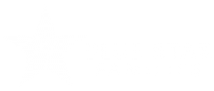 Blue Star Families Logo white transparent