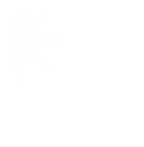 Charity Navigator white logo transparent