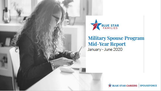 Careers Mid Year Report 2020 Cover thumbnail image